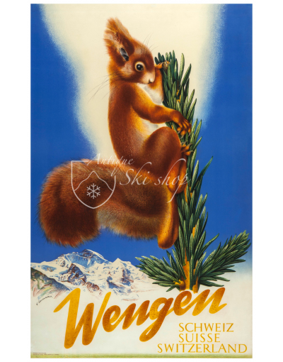 WENGEN (Squirell)