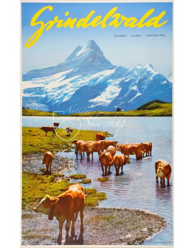 Vintage Swiss Ski Resort Poster : GRINDELWALD (Cows)