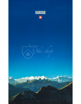 Vintage Swiss Travel Poster : SUISSE