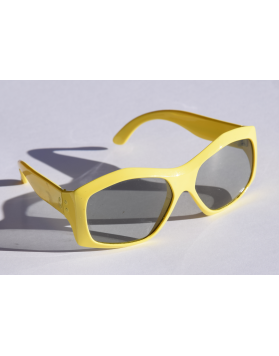Retro Ski Sunglasses