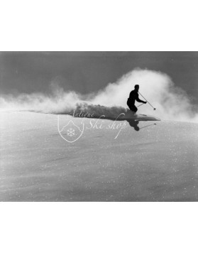 Vintage Ski Photo - Perfect Powder